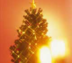 Christmas Tree Fires: It Can Happen!