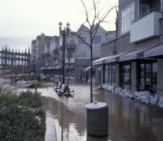 Consider the Purchase of Flood Insurance