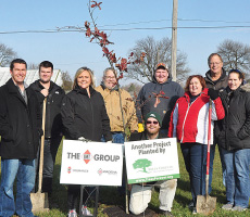 Go Green with IMT - Five Trees Planted in Emmetsburg, IA